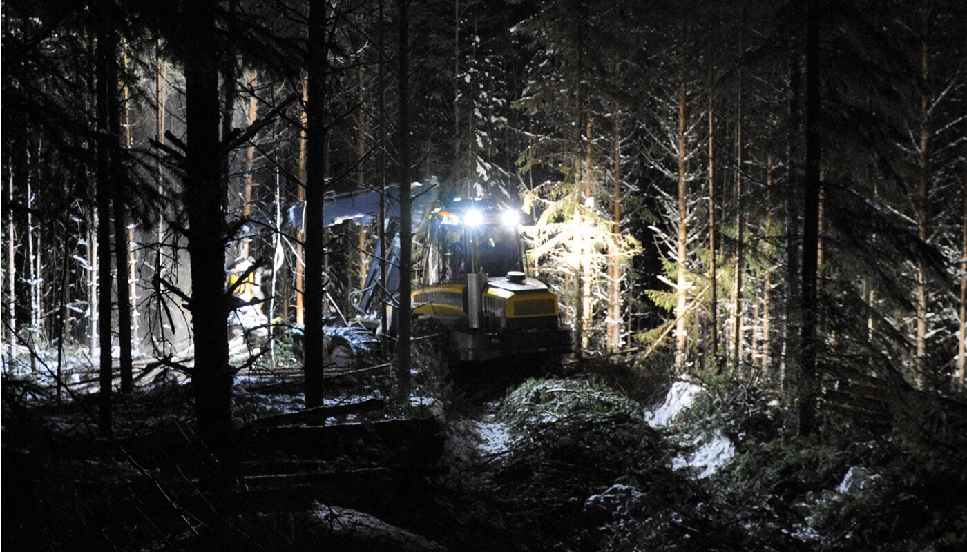 pracovni_svetlo_les